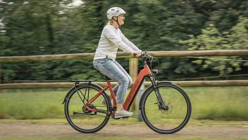 Opzoek naar een elektrische fiets met lage instap?
