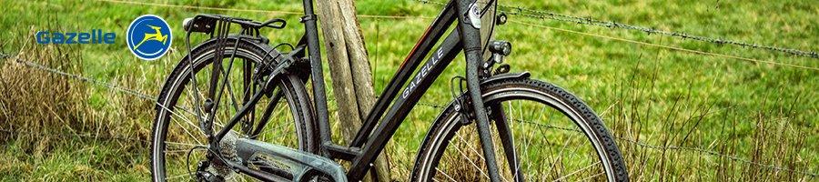 Gazelle Chamonix