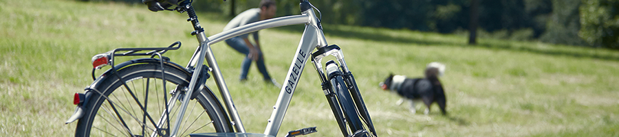Grijze fiets