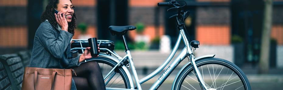 E-bikes voor Huis, tuin en keukenfietsers