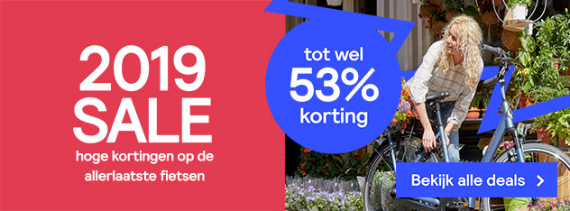 E-bike 2019 sale
