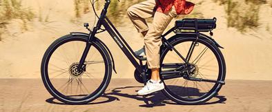 Speed pedelecs bij fietsenwinkel.nl
